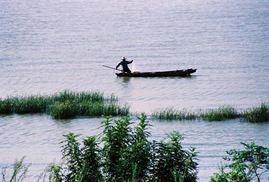 东莞农家乐好去处推荐松湖生态园