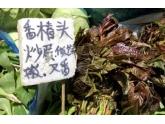 贵到飞起!这种蔬菜卖到90蚊/斤!有无bob娱乐下载地址人食过?